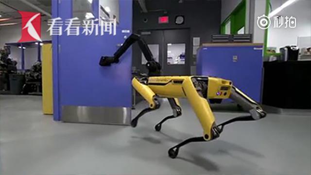 波士顿动力机器人犬 学会帮同类开门