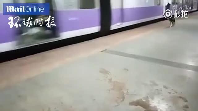 狗狗每天站台追逐火车 落寞身影令人心碎