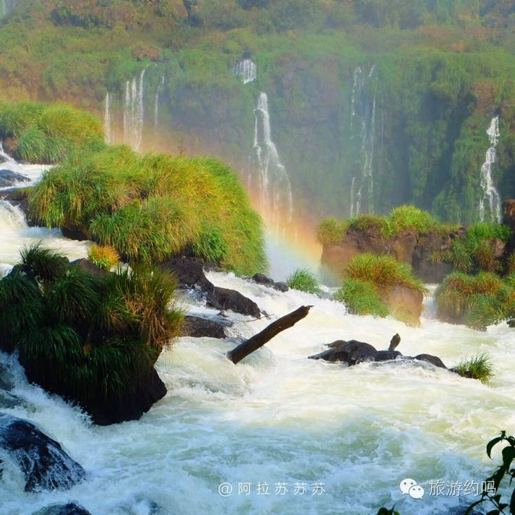 特别注意有网一定要打卡因为走几步就是阿根廷境内,在大瀑布也能看到阿根廷境内。