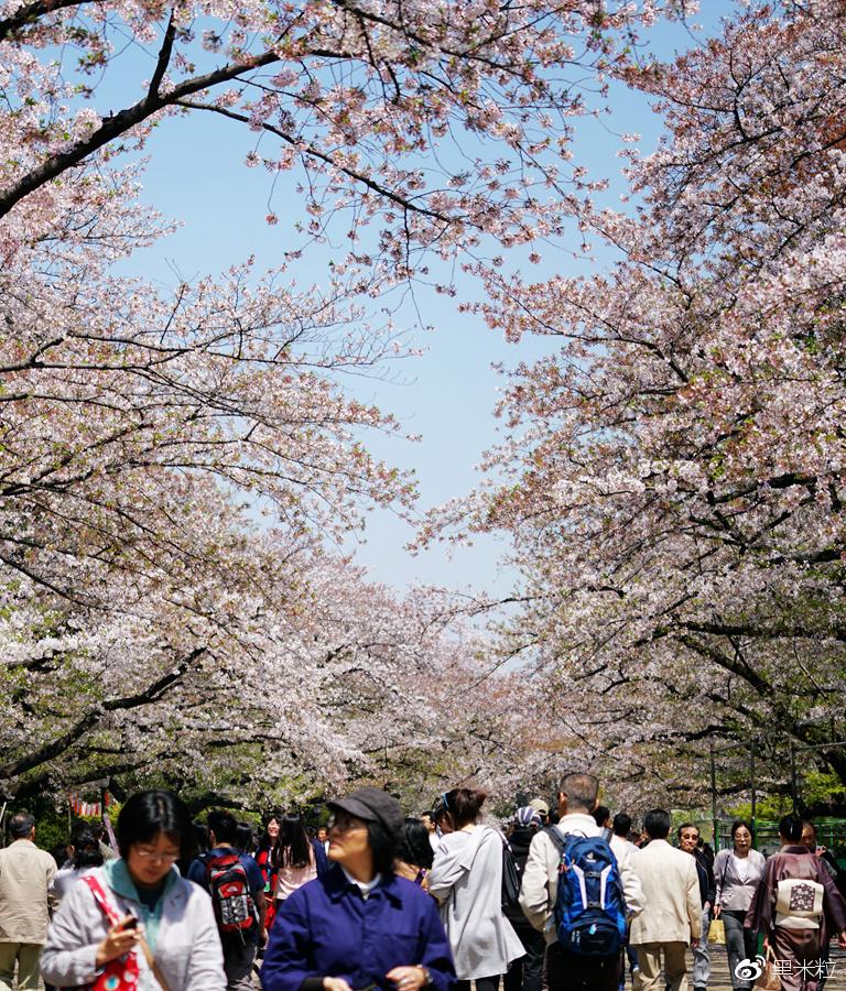 全球最宜居的城市东京 转角遇到的那些小确幸