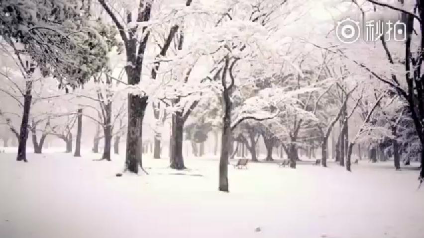 《等你下课》真人导演版MV来了,看完MV,假期综合症秒治愈!!!全球热搞...