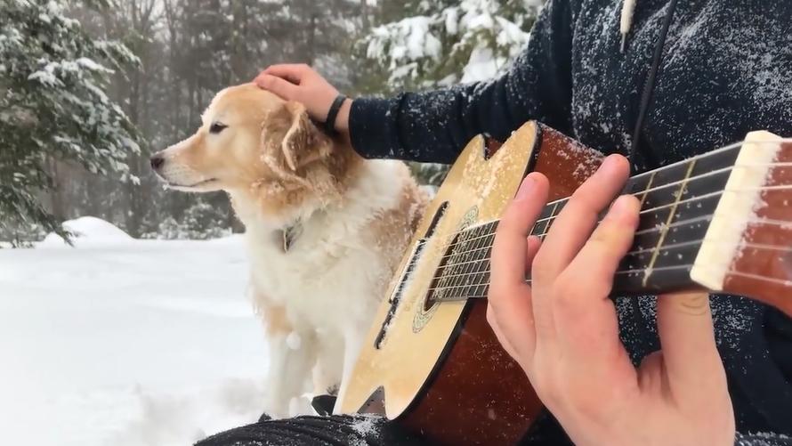 吉他弹奏 爱乐之城 插曲 大雪天儿和狗狗的唯美画面