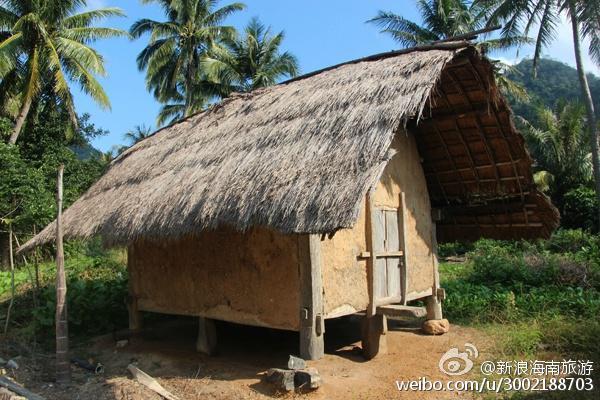 村子的后面有一片地,远处有山,近处有稻田,鸟儿飞过,蚂蚱乱跳,你有多久,没有触碰到这些童年里熟悉的场景了?