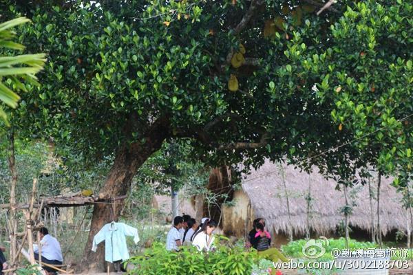 大广坝:这是大自然的力量