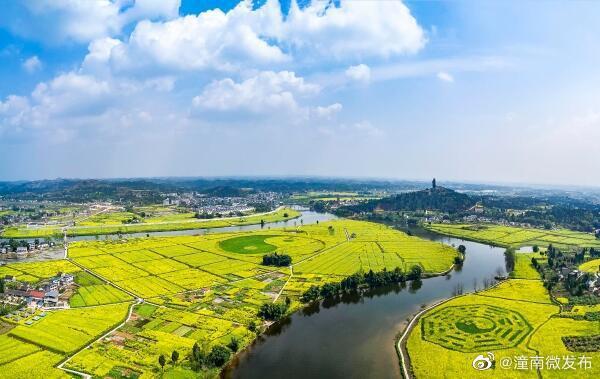 3月6日 陈抟故里景区恢复开放