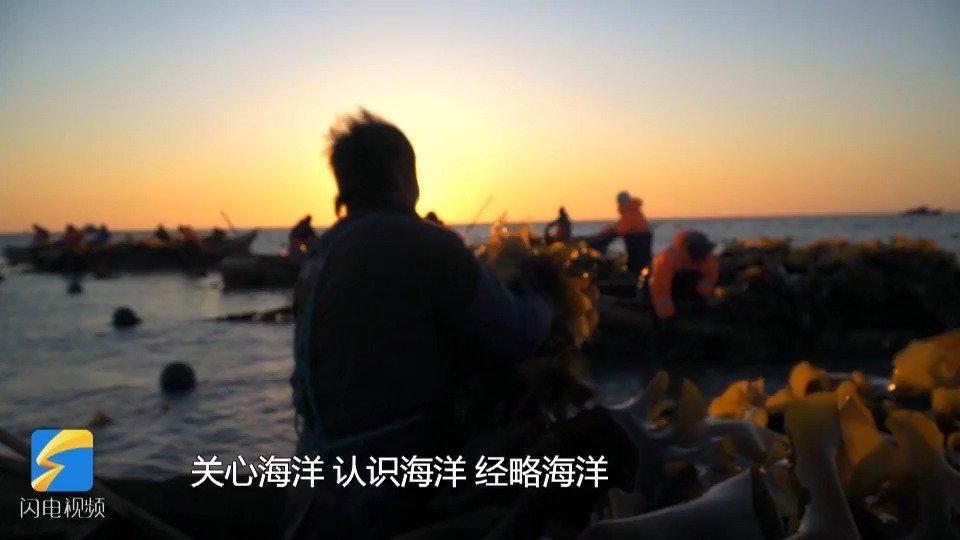 """新渔民""""海带爸爸""""李明潭:向海而生!将海藻类生物哺育成肥"""