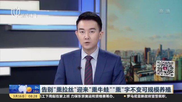 """上海告别""""熏拉丝""""迎来""""熏牛蛙"""""""