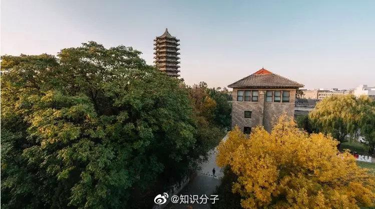 北京大学科学技术与医学史系2020年招聘启事 | 推广