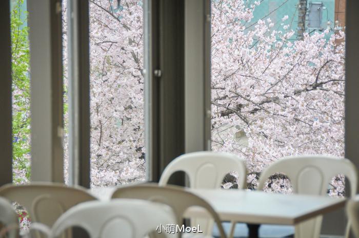 窗边的樱花座