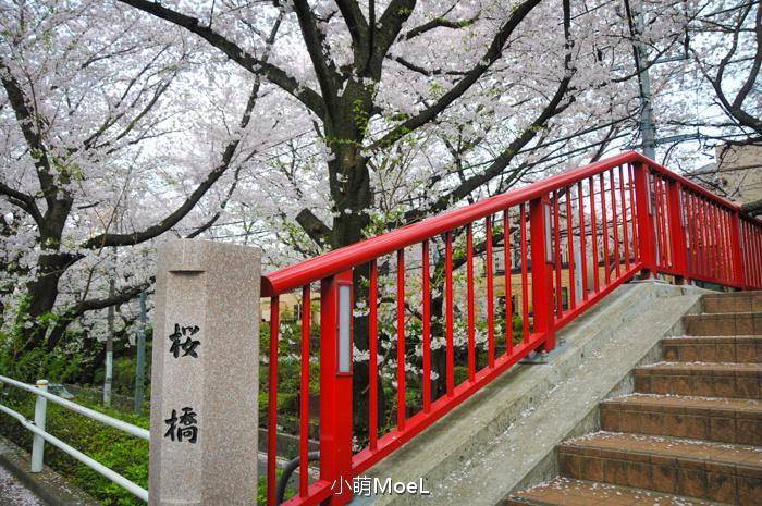 红色的樱桥