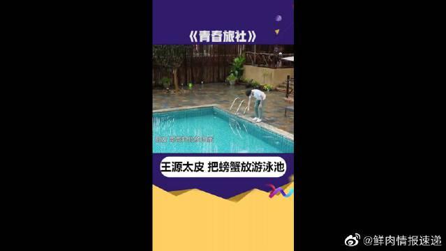 王源你太皮了,竟然要把螃蟹放进游泳池?真逗!