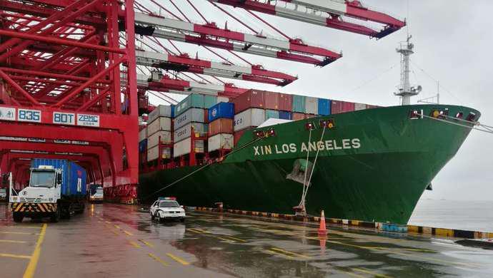 供应武汉的首船进口猪肉今晨抵沪,洋山边检快速通关确保新鲜直达图片