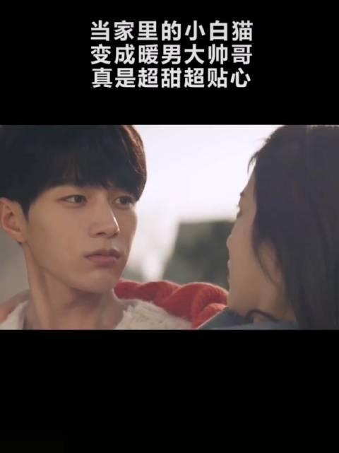 刷某音看到一部韩剧《快过来》  带回来的猫咪变成了小帅哥的设定