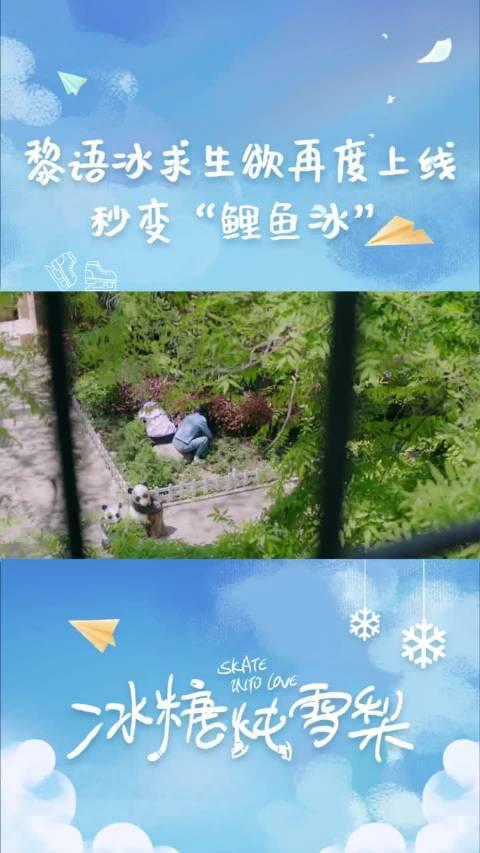 """电视剧冰糖炖雪梨  吴倩  张新成 黎语冰秒变""""鲤鱼冰"""",转发即转运"""
