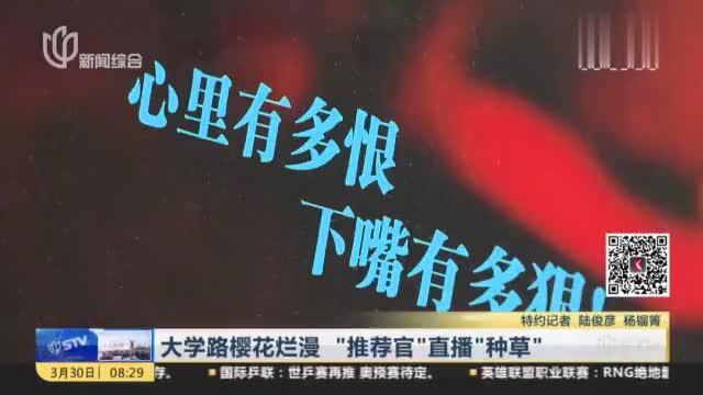 """上海杨浦大学路樱花烂漫,""""推荐官""""直播""""种草"""",引来很多粉丝"""