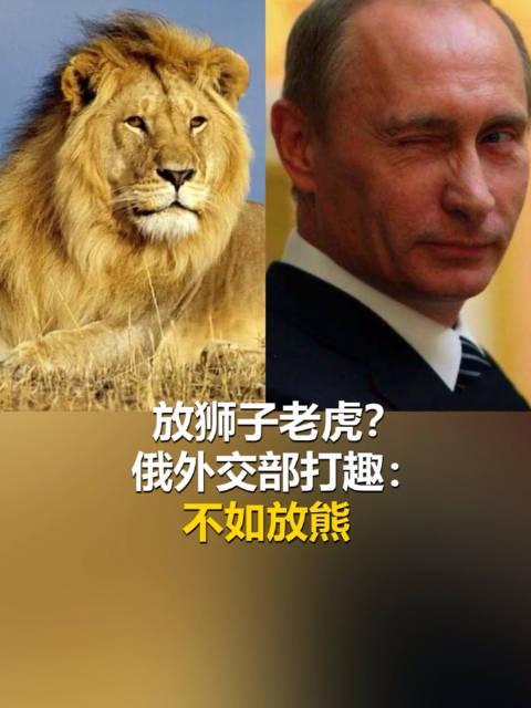 俄罗斯为宵禁在街上放狮子老虎?俄外交部发言人笑了:咱一般放熊