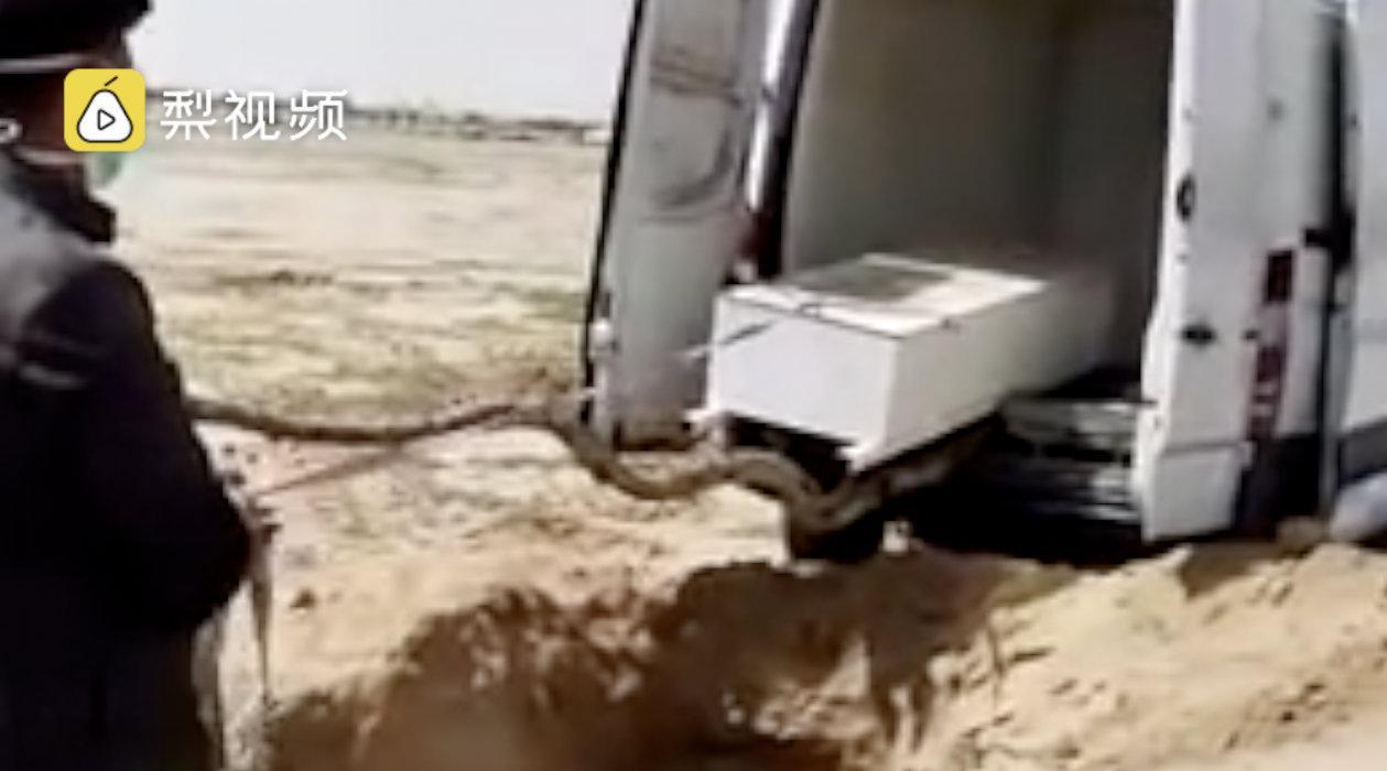 外媒:伊拉克新冠死者下葬难,墓地担心传染拒收,尸体在医院超一周