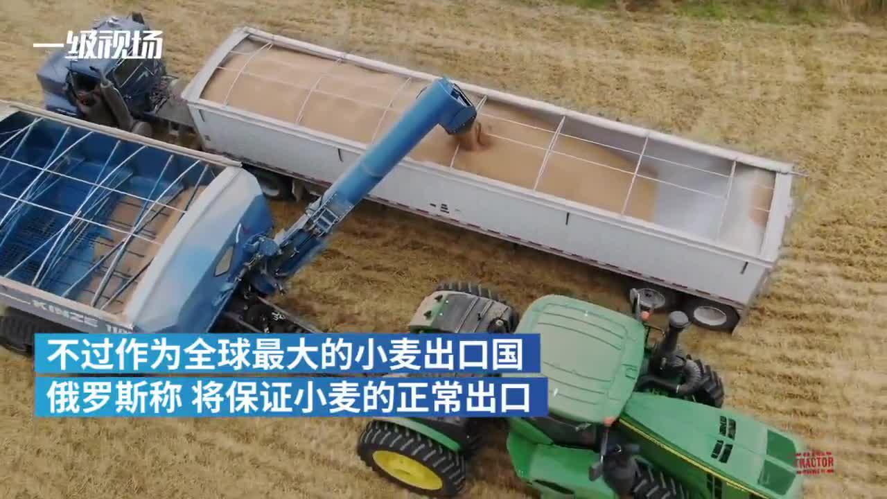 视频|5月全球粮食供应链或中断