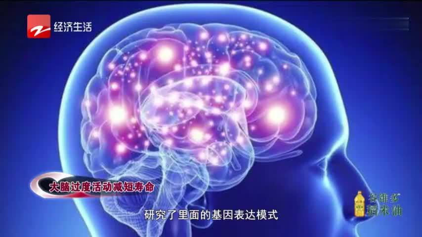 """美国哈佛医学院最新研究,""""多动脑""""竟然会减少寿命?"""