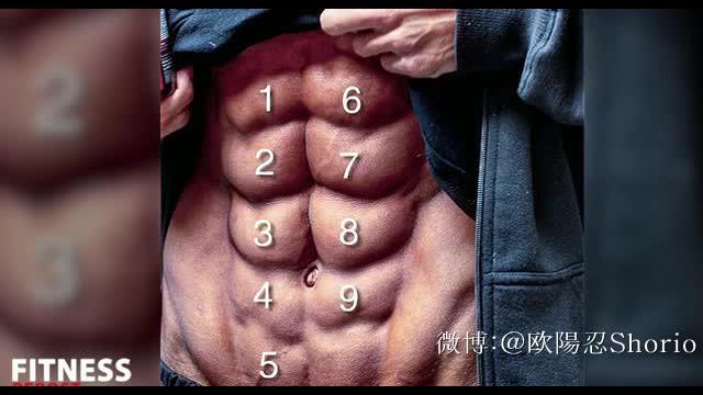 一个视频告诉你如何得到10块腹肌----1