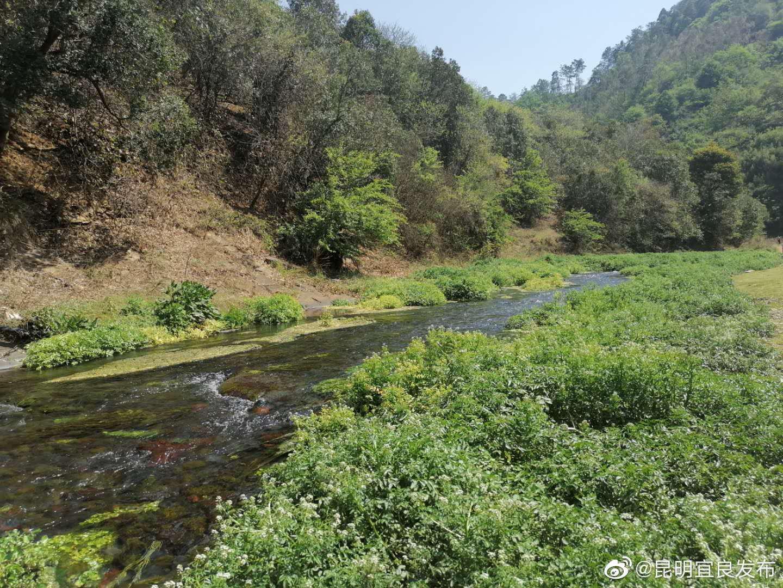 天生桥村小组位于九乡乡甸尾村委会,距离九乡风景区3公里