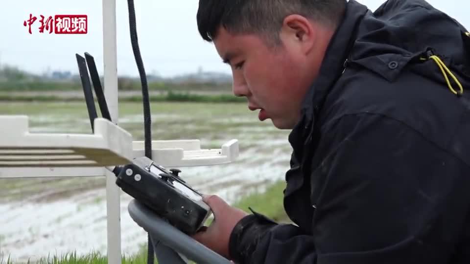 """江西南昌:无人驾驶插秧机显身手 """"互联网+农机""""助力春耕"""