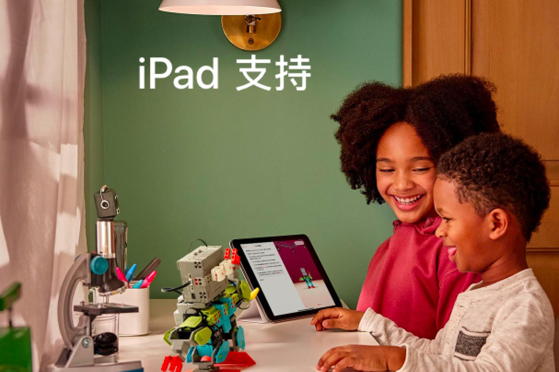iPad mini5,白苹果自救无效,送修售后过程