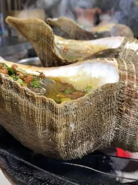 几百万年进化出来的保护壳,没想到竟是炖自己的锅…