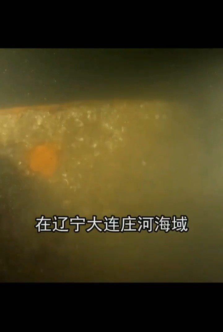 """甲午海战北洋水师沉舰""""经远"""",在大连海域被发现"""