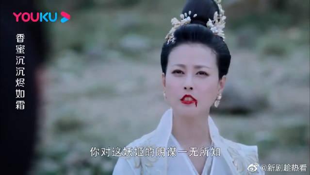杨紫&邓伦&罗云熙