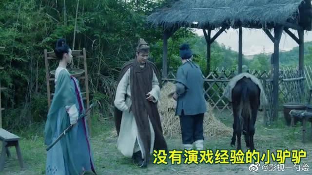 韩东君、陈瑶、隋栐良、丁桥