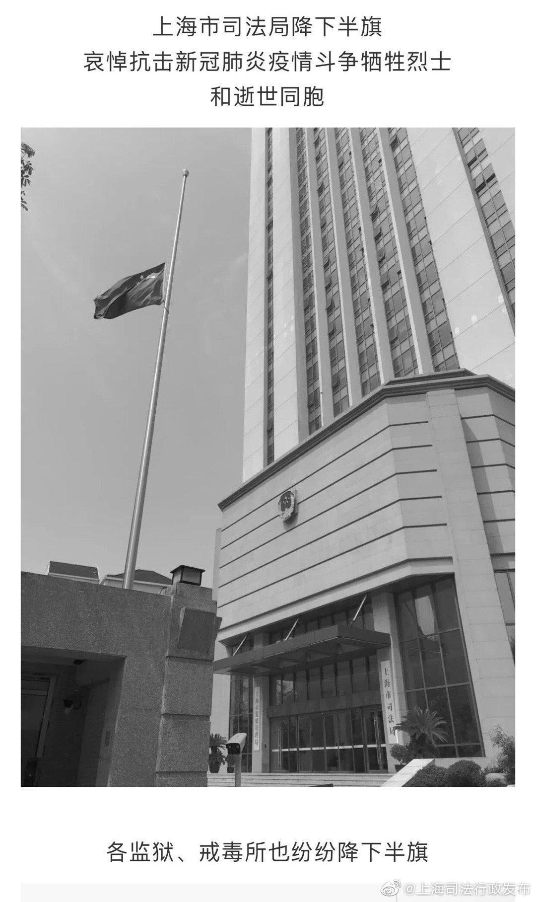 清明追思,家国永念!上海司法行政系统哀悼烈士与逝世同胞