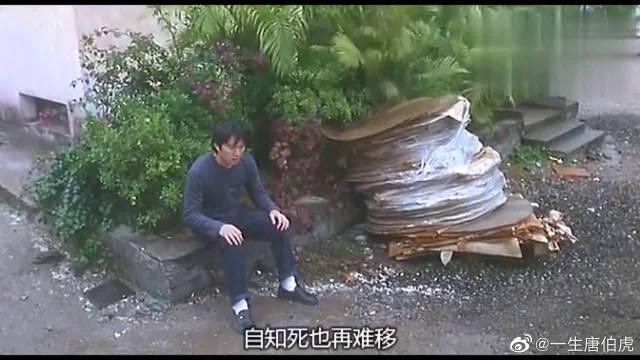 周星驰和吴孟达搭档,唯一一部吴孟达没有扮丑的电影