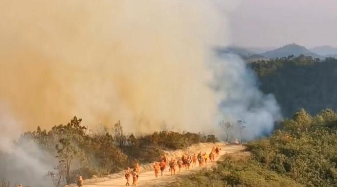 昆明森林火灾灭火纪实:谷深林密,连续作战17小时