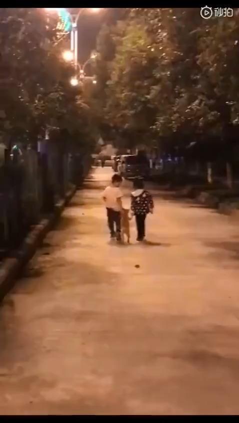 路上看到两位小朋友遛狗 ,被撩到了