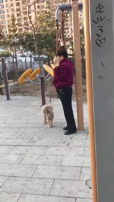 狗:有谁活着不像是一场炼狱