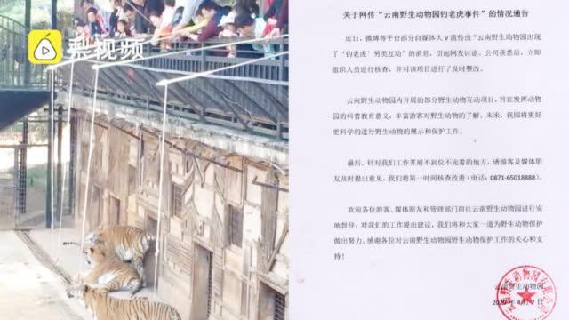 云南野生动物园回应钓老虎项目:组织核查并整改