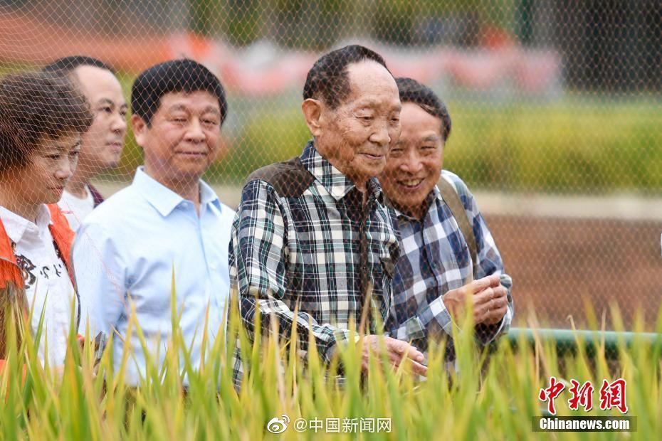 袁隆平称中国不会出现粮荒 完全能够自给自足