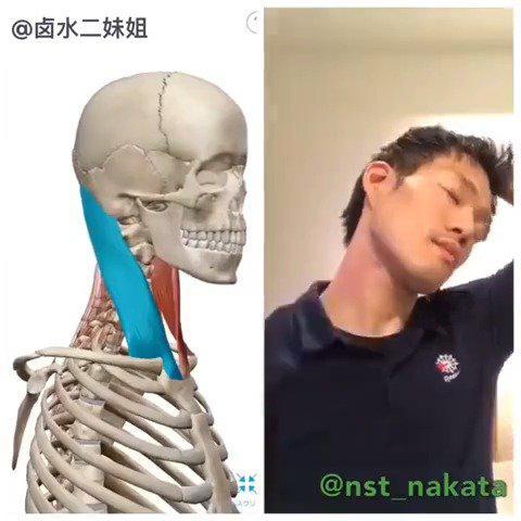 颈椎不好的人,试试这套睡前拉伸操……