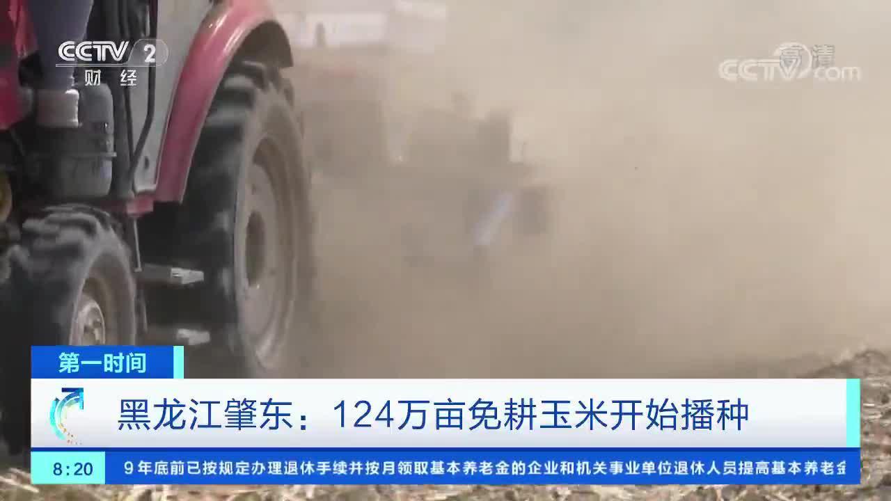 [第一时间]黑龙江肇东:124万亩免耕玉米开始播种