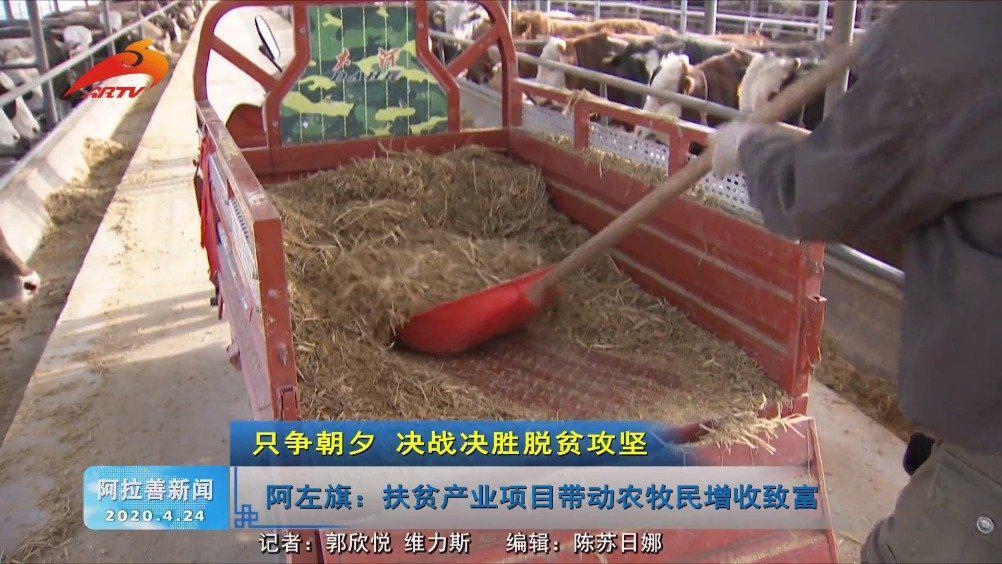 阿左旗:扶贫产业项目带动农牧民增收致富