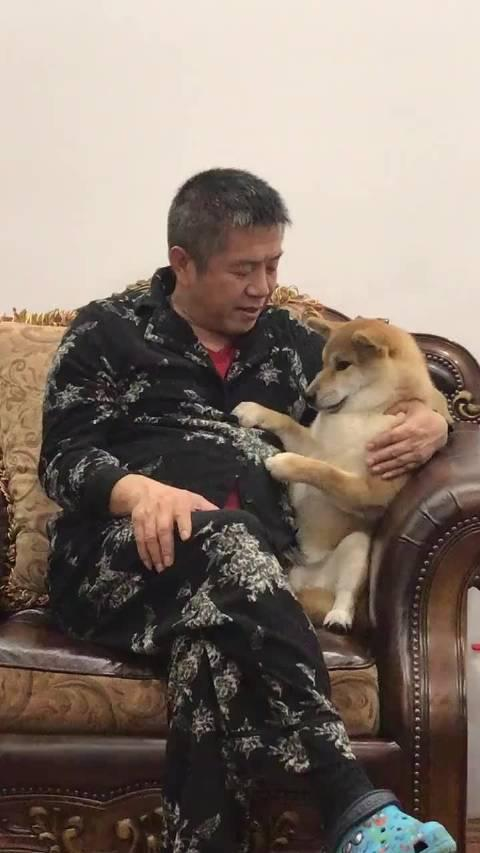 网友:老爸安慰掉牙的狗子,我爸对我都没有这么好