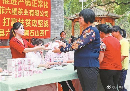 5月8日,苍梧县六堡镇黑石山茶厂向30名茶农发放茶叶款80多万元
