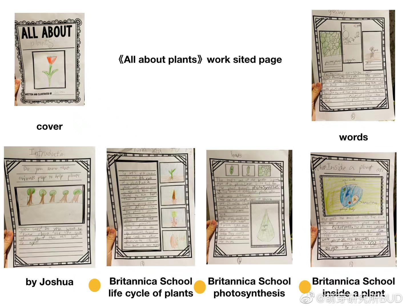孩子网课写作课前面说了跟写论文一样……