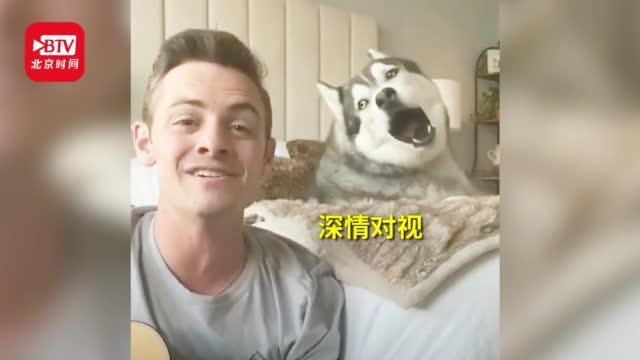 美国医护和哈士奇二重唱 网友:是条有故事的狗