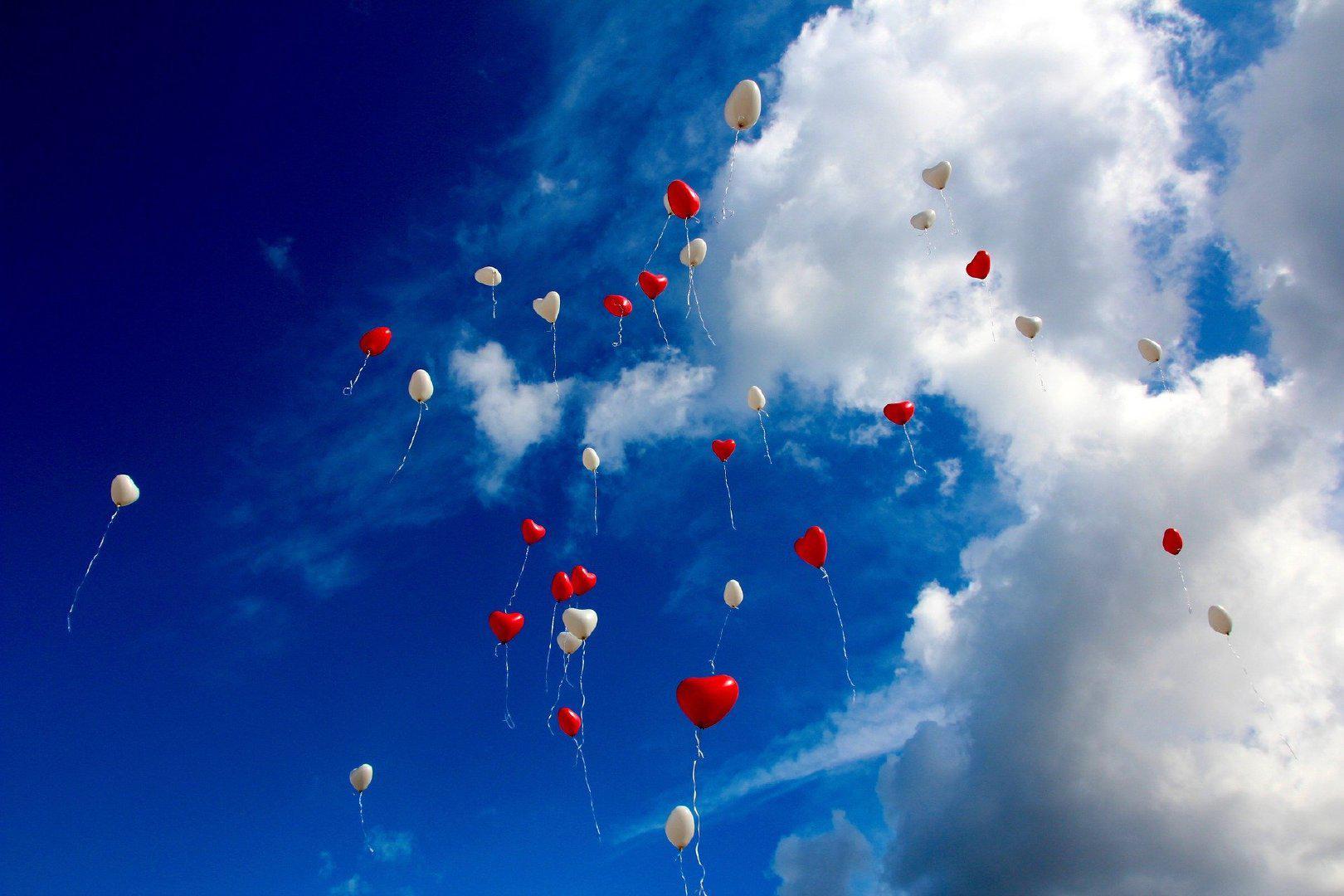 有一个可以想念的人,就是幸福。 ——岩井俊二《情书》
