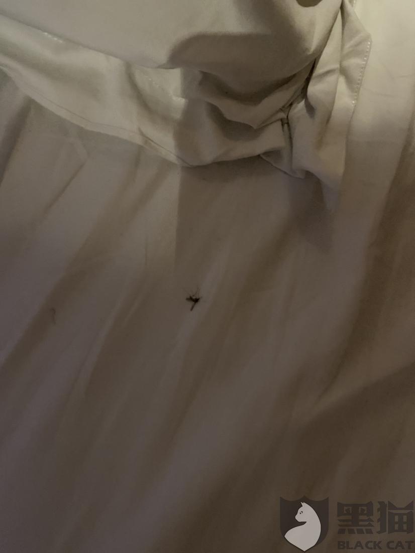 黑猫投诉:酒店空调噪音大,房间隔音效果差。IU酒店(郑州绿城广场地铁站店)