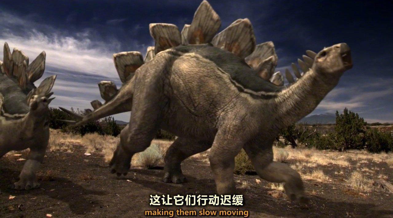 泥滩里的剑龙 Stegosaurus Buried in the Mud