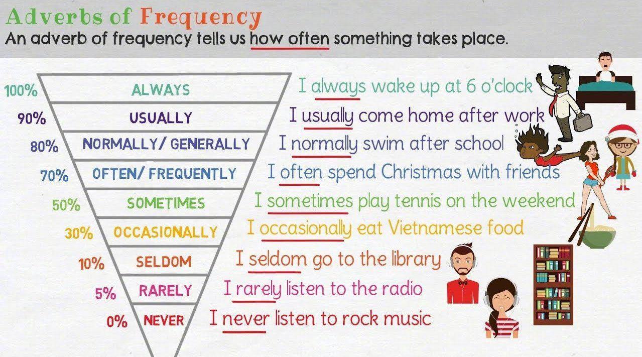 英语频度副词深度辨析