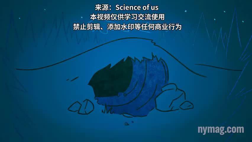 睡不好的时候,试试把jio伸到被子外面